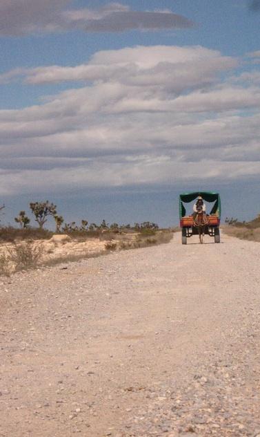 wóz pustyni w drodze