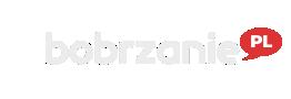 bobrzanie.pl – to co istotne w Bolcu, Bolesławiec, informacje, blogi, sport, rozrywka, humor, imprezy, wideo